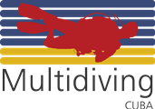 MULTIDIVING